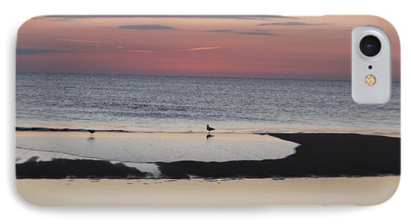IPhone Case featuring the photograph Seagulls On The Seashore by Robert Banach
