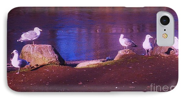 Seagulls On The Willamette River IPhone Case by Suzanne McKay
