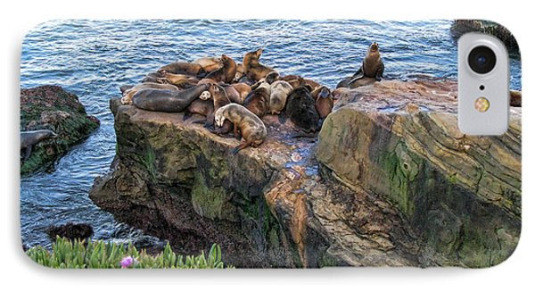 Seals And Pups Phone Case by Bedros Awak