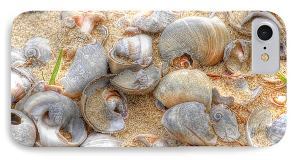 IPhone Case featuring the photograph Seashell 01 by Donald Williams