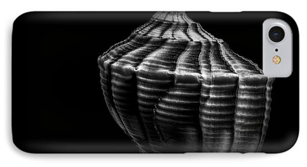 Seashell On Black Phone Case by Bob Orsillo