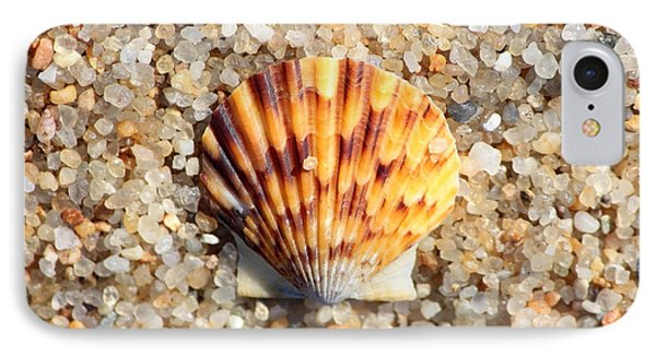 Seashell On Sandy Beach Phone Case by Carol Groenen