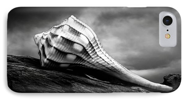 Seashell Without The Sea Phone Case by Bob Orsillo