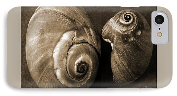 Seashells Spectacular No 6 Phone Case by Ben and Raisa Gertsberg