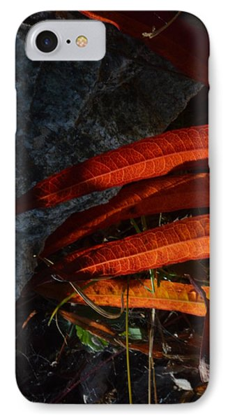 Seasonal Color Theory IPhone Case by Brian Boyle