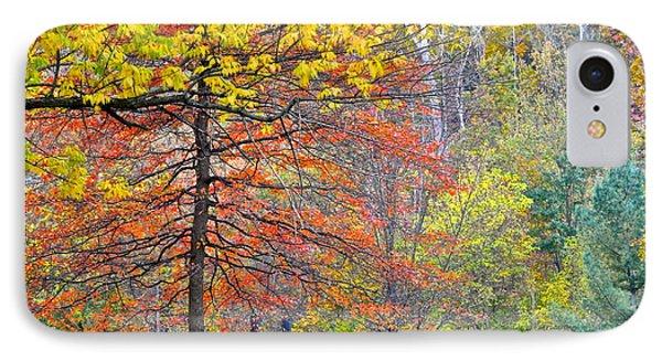Seasonal Sensation IPhone Case by Frozen in Time Fine Art Photography