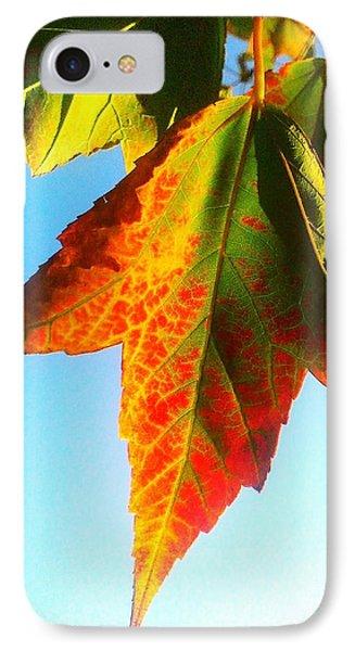 IPhone Case featuring the photograph Season's Change by James Aiken