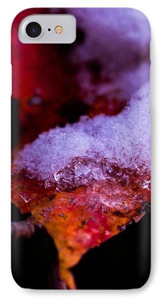 Seasons  IPhone Case by Haren Images- Kriss Haren