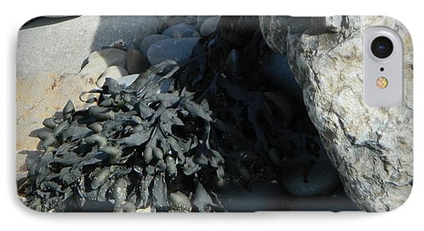 Seaweed And Rocks  IPhone Case