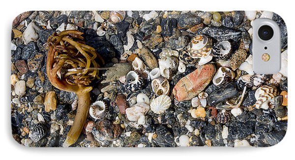 Seaweed And Shells Phone Case by Steven Ralser