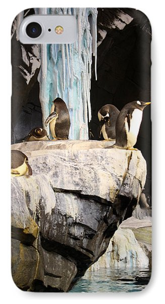 Seaworld Penguins IPhone Case by David Nicholls