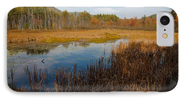 Secluded Adirondack Pond Phone Case by David Patterson