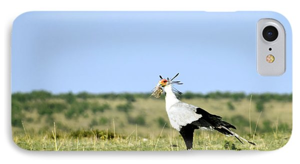 IPhone Case featuring the photograph Secretary Bird Gathering  by AnneKarin Glass