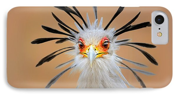 Secretary Bird Portrait Close-up Head Shot IPhone Case by Johan Swanepoel