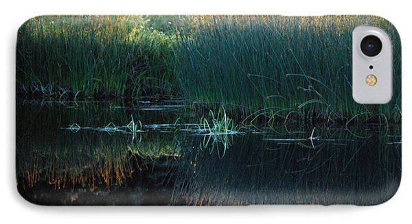 Sedges At Sunset IPhone Case by Cynthia Lagoudakis