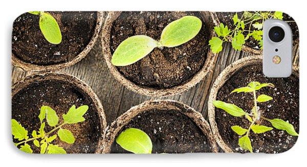 Seedlings Growing In Peat Moss Pots IPhone Case by Elena Elisseeva