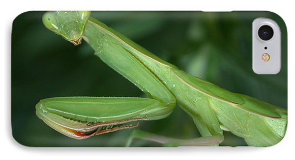 Seeing Green IPhone Case by Shane Bechler