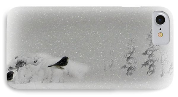 Seeking Shelter IPhone Case by Barbara S Nickerson