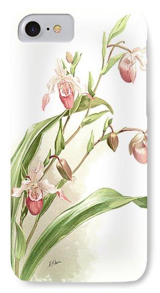 Selenipedium Hybridum Weidlichianum, Sander IPhone Case