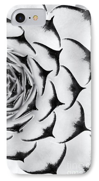 Sempervivum Pattern Monochrome IPhone Case by Tim Gainey