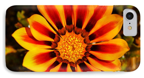Send Out For Sunshine IPhone Case