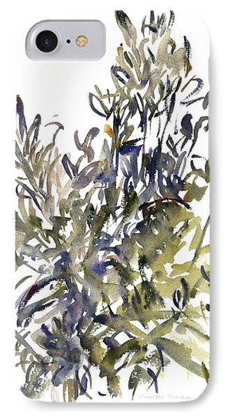 Senecio And Other Plants IPhone Case by Claudia Hutchins-Puechavy