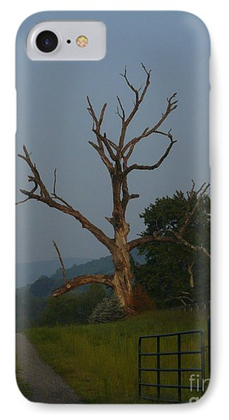 IPhone Case featuring the photograph Sentinel by Jane Ford