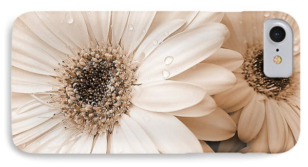 Sepia Gerber Daisy Flowers Phone Case by Jennie Marie Schell