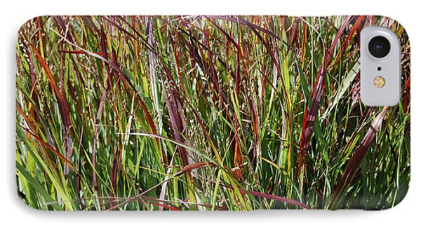 September Grasses By Jrr Phone Case by First Star Art