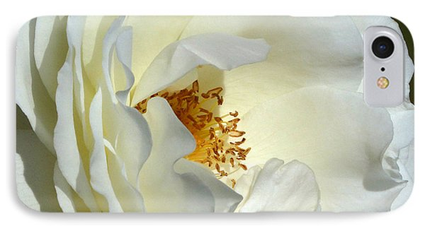 IPhone Case featuring the photograph September Mourn Rose by Cindy McDaniel