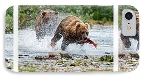 Sequence Of Large Brown Stealing Salmon From Smaller Brown Bear Phone Case by Dan Friend