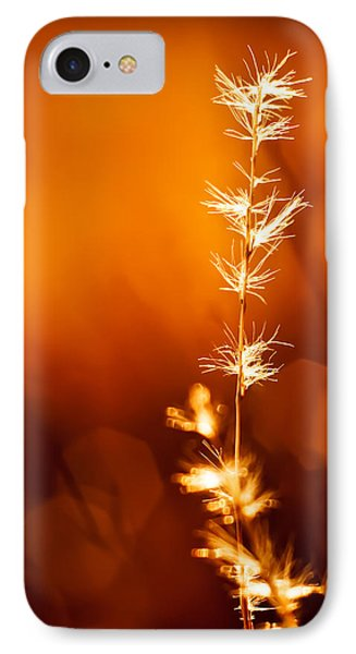 IPhone Case featuring the photograph Serene by Darryl Dalton