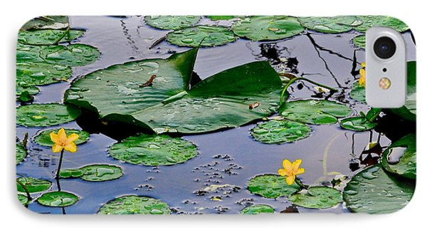 Serene To The Extreme Phone Case by Frozen in Time Fine Art Photography