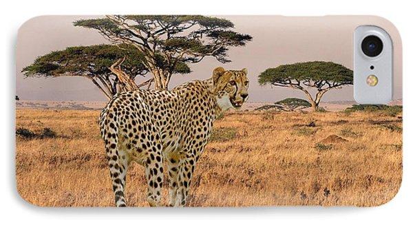 Serengeti Cat IPhone Case