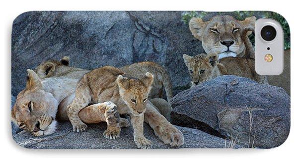 Serengeti Pride IPhone Case by David Beebe