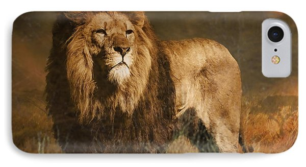 IPhone Case featuring the photograph Serengeti Sunset by Brian Tarr