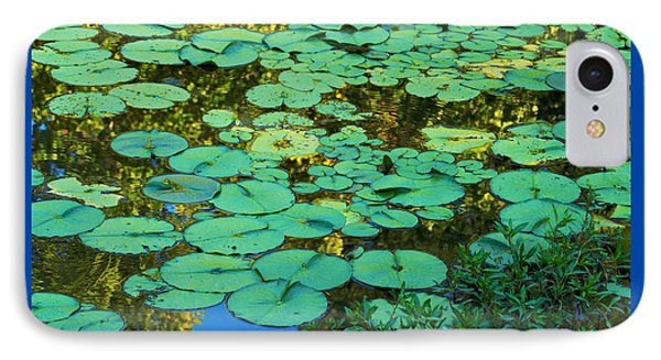 IPhone Case featuring the photograph Serenity Found - Green Lotus Leaves In Blue Water by Jane Eleanor Nicholas