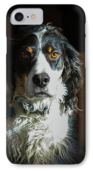 Setter In Contrast Phone Case by Andrew Lawlor