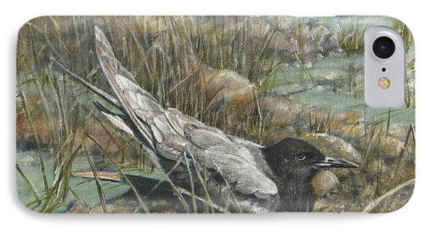 Seven Black Terns IPhone Case by Rob Dreyer