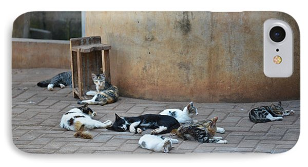 IPhone Case featuring the photograph Eight Cats In The Drum Maker's Yard by Ronda Broatch