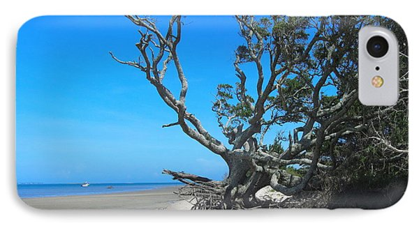 Shackleford Banks Tree 2 IPhone Case by Cathy Lindsey