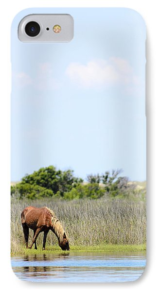 Shackleford Pony IPhone Case by Rex Williams