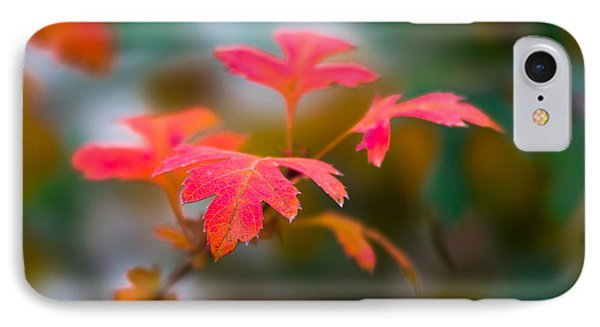 Shades Of Autumn - Red Leaves Phone Case by Alexander Senin