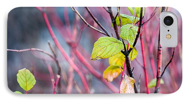 Shades Of Autumn - Reds And Greens Phone Case by Alexander Senin