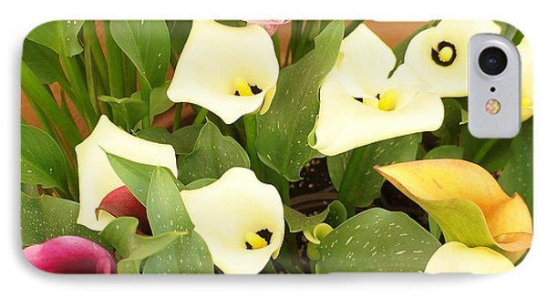 Shades Of Calla Lilies IPhone Case