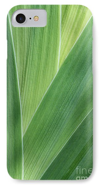 IPhone Case featuring the photograph Shades Of Green #2 by Judy Whitton