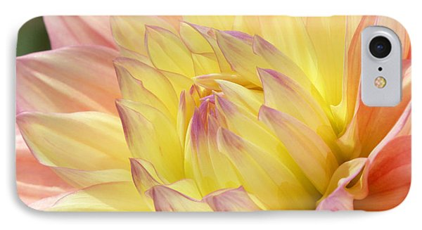 IPhone Case featuring the photograph Shades Of Happiness by Cindy McDaniel