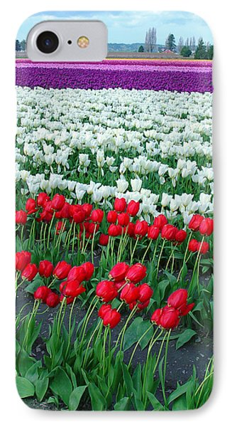 Shades Of Tulips IPhone Case by John Bushnell
