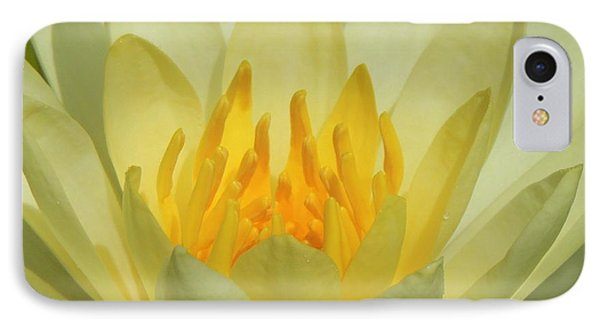 Shades Of Yellow IPhone Case
