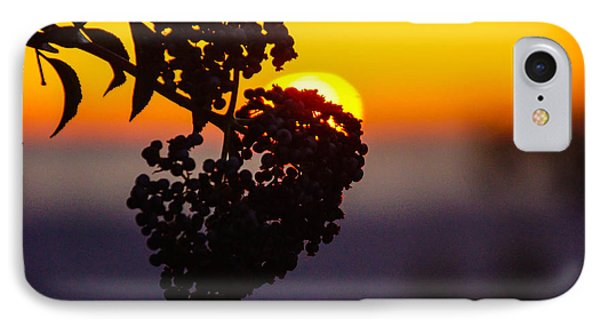 Shadow Berry Sunset IPhone Case